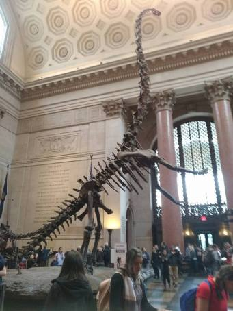 NYC_AMNH2